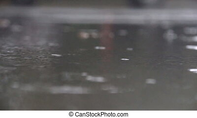 Rain drops fall into puddles