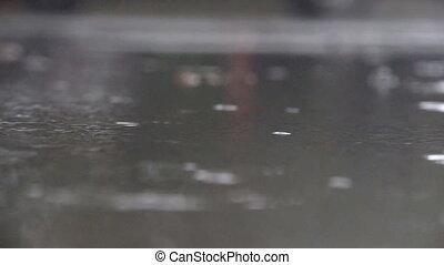 Rain drops fall into puddles