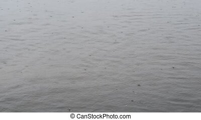 Rain drops fall on water surface of pond, lake or river