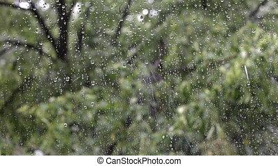 rain drops falling on a window.