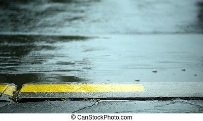 Rain drops falling on the road