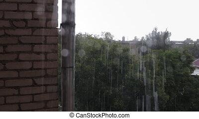 Rain drops falling on window pane