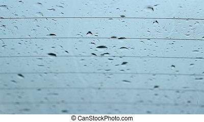 Rain Drops Flatten on Windows