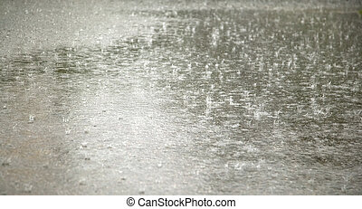 Rain drops on blacktop