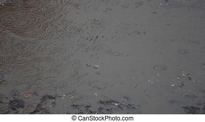 Rain drops on muddy puddle - Rain drops on a muddy puddle