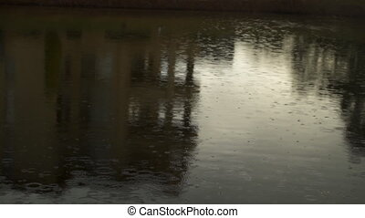Rain drops on the lake surface pouring rain summer day -...