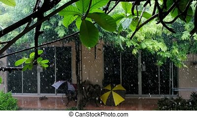 Rain falls in the yard in resort on summer, 3840x2160, 4k -...