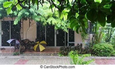 Rain falls in the yard in resort on summer, 3840x2160 - Rain...