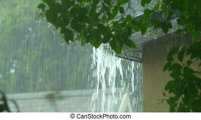 Rain flows from a house roof into a gutter during rain....