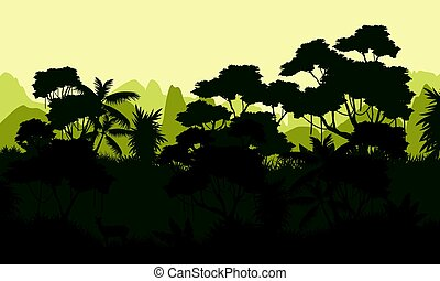 Rain forest scenery with tree silhouette