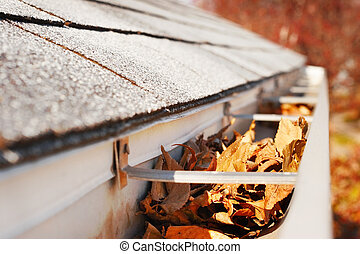 Rain Gutter full of leaves - Close-up of a rain gutter that...