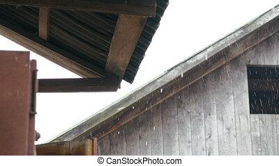 Rain. Look under wood roof in home
