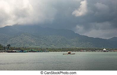 Rain on the tropical island