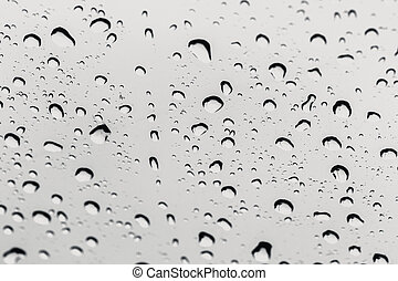 rain water drops on a white background
