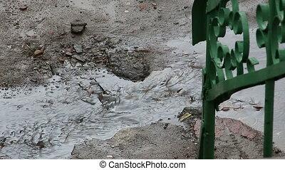 Rain water flows on the asphalt
