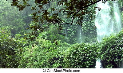 rain waterfall jungle