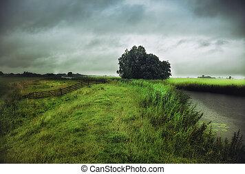 rain weather landscape photo
