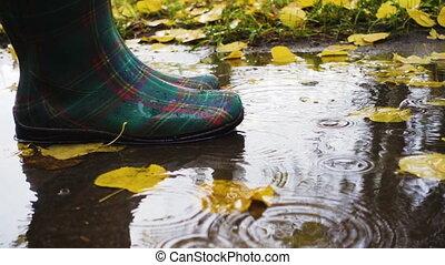 rainboots, flaque