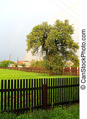 rainbow after the rain in the village