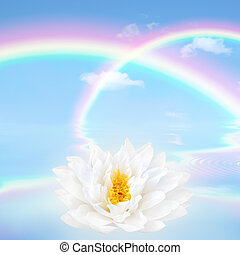 Rainbow and Lotus Lily Flower - Double rainbow fantasy...