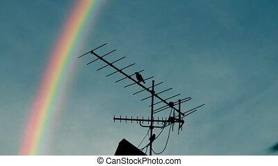 Rainbow, Tv antenna and a crow.