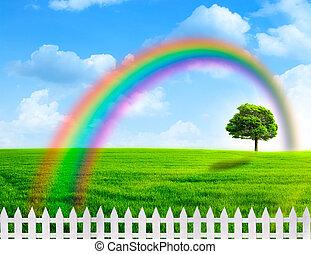 rainbow., arc-en-ciel, résumé, naturel, arrière-plans