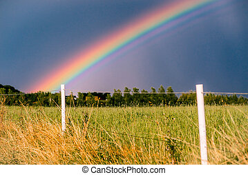 Rainbow at a field