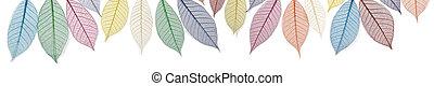 Rainbow colored skeleton leaves
