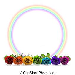 Rainbow coloured roses and rainbow circle border
