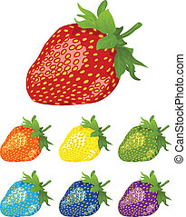 rainbow., différent, baies, strawberry., couleurs