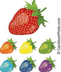 rainbow., différent, baies, strawberry., couleurs