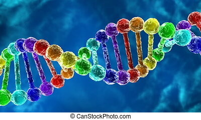 Rainbow DNA - deoxyribonucleic acid - Animation of...