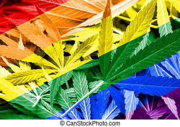 Rainbow Flag on cannabis background. Drug policy. ...