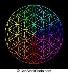 Rainbow flower of life - symbol of sacred geometry