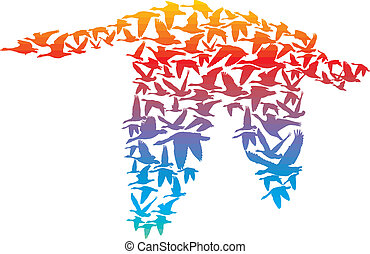 Rainbow Goose
