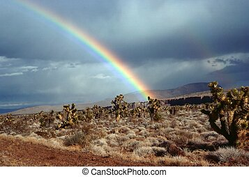 Rainbow in desert, Nevada