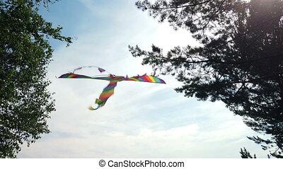 Rainbow kite flying in blue sky