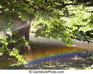 Rainbow on an irrigation glade in park