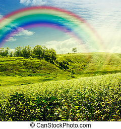 Rainbow on the meadow. Abstract natural backgrounds for your design