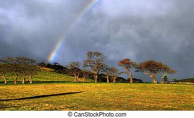 rainbow over a farm