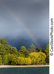 Rainbow over forest at cloudy day in New Zealand.