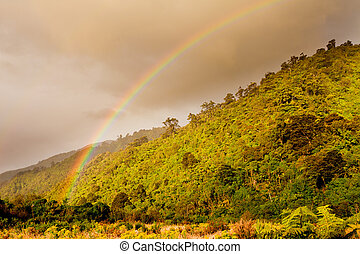 Rainbow over forest foothills, West Coast, NZ