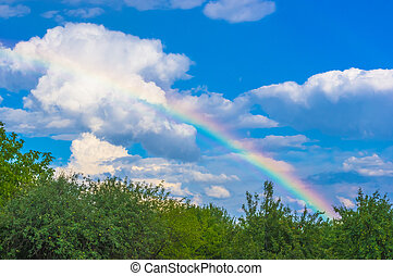 rainbow over the orchard