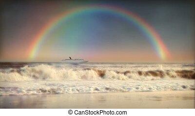 Rainbow Sky Ocean Surf Beach Cruise