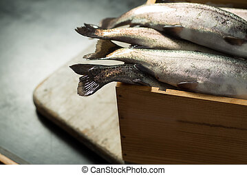 Rainbow Trout in a Wooden Crate