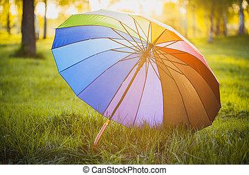 Rainbow umbrella on green grass background - Rainbow...