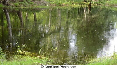 raindrops falling on calm surface of the water forming the...