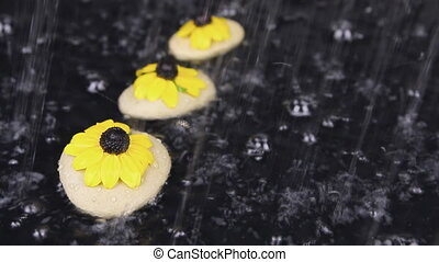 Raindrops falling on the stones