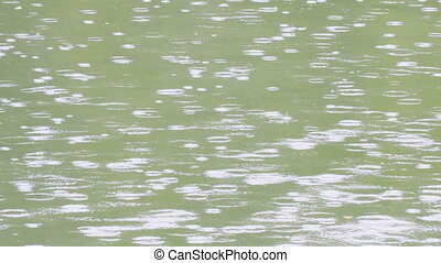 Raindrops on the river in summer - Raindrops on the river in...