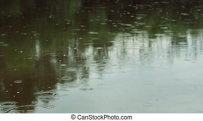 Raindrops on the water. Raindrops are falling. Rainy weather.
